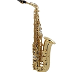52JU Series II Jubilee Edition Alto Saxophone Outfit . Selmer Paris