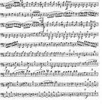 Symphony No.5 . Cello & Bass Part . Beethoven